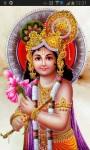 Lord Krishna Pics screenshot 3/4
