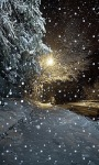 Snowy Night Road LWP screenshot 2/3