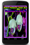 Rare Flowers That Are Stunning To Look At screenshot 1/3