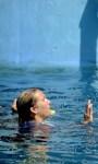 Dolphin Tale 2 HD Wallpaper screenshot 3/6