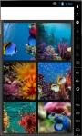 Underwater Sliding Puzzle screenshot 1/4