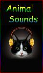 Animal Sounds Ringtones HQ screenshot 1/4