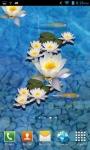 3D fish Pond Live wallpaper screenshot 1/3