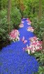 Flower Garden LWP2 screenshot 1/3
