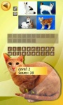 Cats Quiz  screenshot 4/4