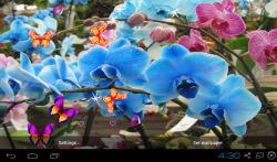 3D Orchid flower Live Wallpaper screenshot 1/5
