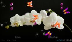 3D Orchid flower Live Wallpaper screenshot 3/5