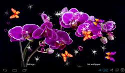 3D Orchid flower Live Wallpaper screenshot 5/5
