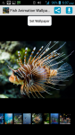 Fish Animation HD Wallpaper screenshot 1/3