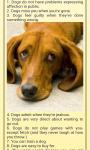 Funny Pet Stories screenshot 1/1