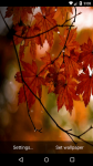 Beautiful Autumn Live Wallpaper HD screenshot 3/6