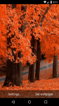Beautiful Autumn Live Wallpaper HD screenshot 5/6