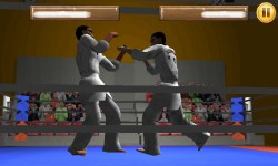Taekwando Fight screenshot 3/5
