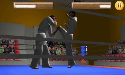 Taekwando Fight screenshot 4/5