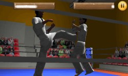 Taekwando Fight screenshot 5/5