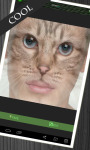 Animal Face Morph screenshot 3/3