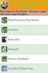 Most Expensive Dog Breeds screenshot 2/3