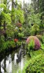 Japanese Zen Garden Live Wallpaper Free screenshot 4/5