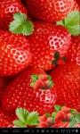 Strawberries Lwp free screenshot 2/3