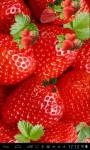 Strawberries Lwp free screenshot 3/3