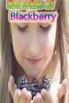 Benefits of Blackberry screenshot 1/4