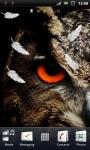 Wild Owl Live Wallpaper screenshot 2/3