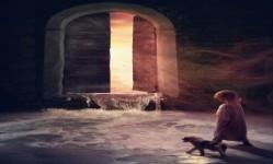 The Door Room screenshot 5/5