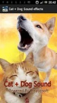 Cat  Dog Sound effects screenshot 1/4