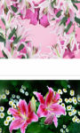 Spring and Pink Easter Lilies wallpaper HD screenshot 3/3