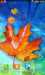 Autumn Live Wallpaper QHD screenshot 2/6