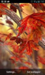 Autumn Live Wallpaper QHD screenshot 3/6