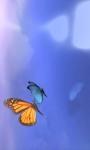 Butterfly Dream screenshot 2/4