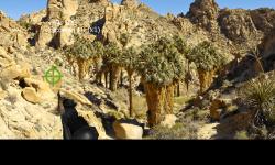 Animal Hunter 3D screenshot 5/6