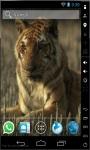 Tiger Resting Live Wallpaper screenshot 1/2