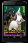 Cutest Photos Of Animals Kissing screenshot 1/3