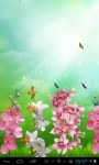 Beautiful orchids screenshot 1/3