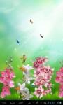Beautiful orchids screenshot 2/3