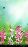 Beautiful orchids screenshot 3/3