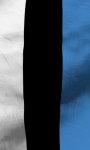 Estonia flag lwp Free screenshot 4/5