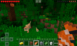 Minecraft Pocket Edition HD screenshot 4/4