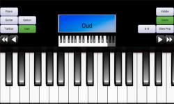 Portable Piano Guitar Qanun screenshot 4/6