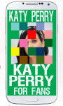 Katy Perry Puzzle Games screenshot 6/6