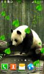 Cute Panda Live Wallpapers screenshot 3/6