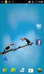 Birds Live wallpaper app screenshot 1/3