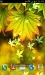 Autumn Bokeh Leaves Live Wallpaper screenshot 2/6
