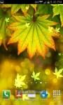 Autumn Bokeh Leaves Live Wallpaper screenshot 3/6