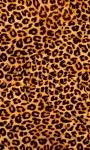 Best Leopard Wallpaper screenshot 2/6