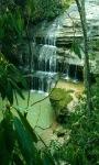 Green Forest Waterfall LWP screenshot 1/3