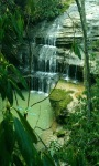 Green Forest Waterfall LWP screenshot 2/3