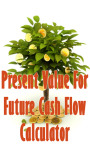 Present Value For Future Cash Flow Calculator screenshot 1/3